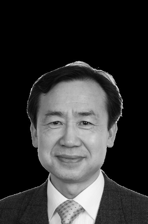 Prof. Byungho Choi